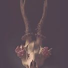 « Crane cerf Nature morte vintage » par LilaVert