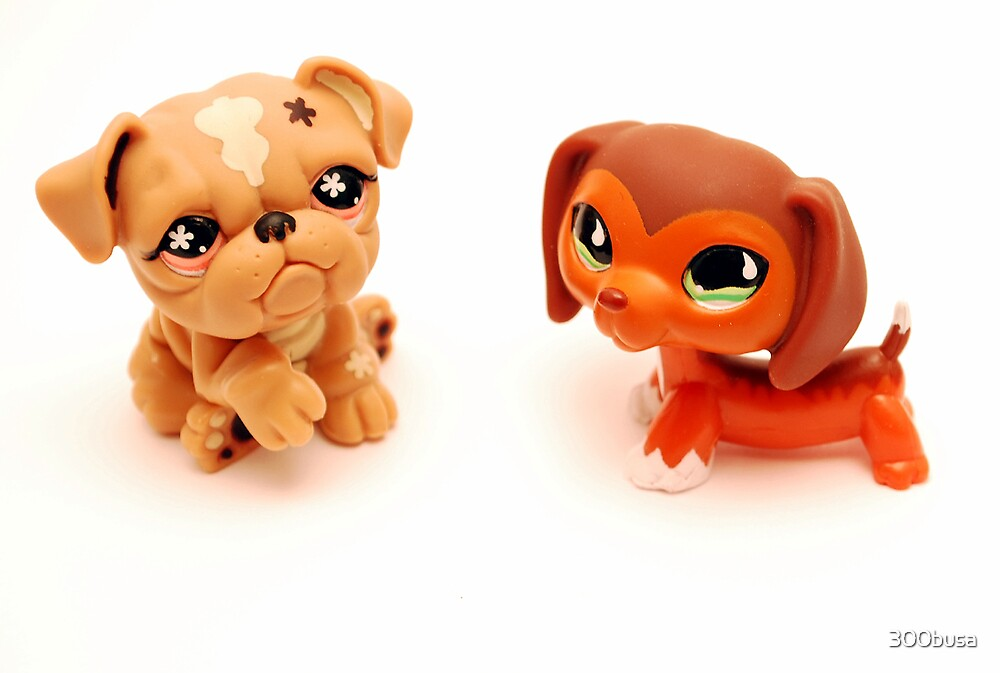 Littlest Pet Shop Dog Toys. Toys. Action Figures. Littlest Pet Shop Dog Toys. Showing 40 of results that match your query. Search Product Result. Product - Littlest Pet Shop Case, Toy Storage Carrying Box. Figures Playset Organizer. Accessories For Kids by .