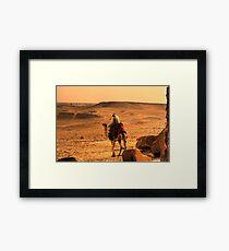 egyptian camel Framed Print