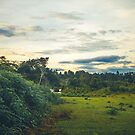Flüsternder Wald von Mohit Sebastian