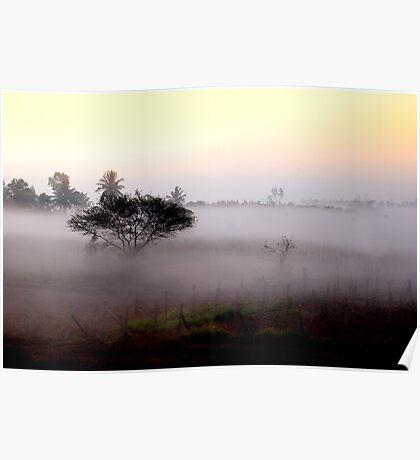 Misty sunshine Poster