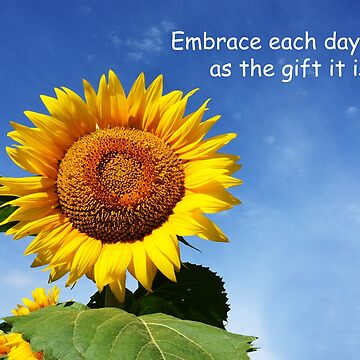Embrace Each Day .......... by BWBConcepts