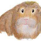Guinea Pig by Linda Ursin