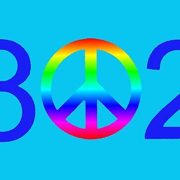 Vermont Rainbow Peace 802 Area Code by alittlebluesky