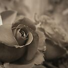 First Love... by Sharath Padaki