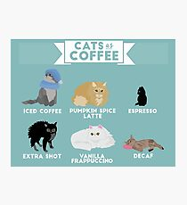 Cats As Coffee Photographic Print