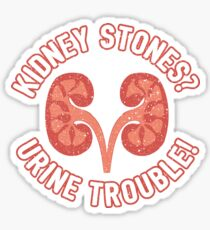 Kidney Stones Urine Trouble - Funny Doctor Pun Gift Sticker