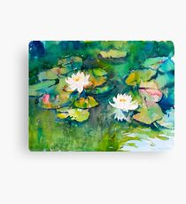 White waterlilies in a pond Canvas Print