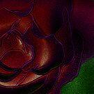 Rose, for you... by Lenka