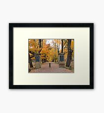 The Path in Fall Framed Print