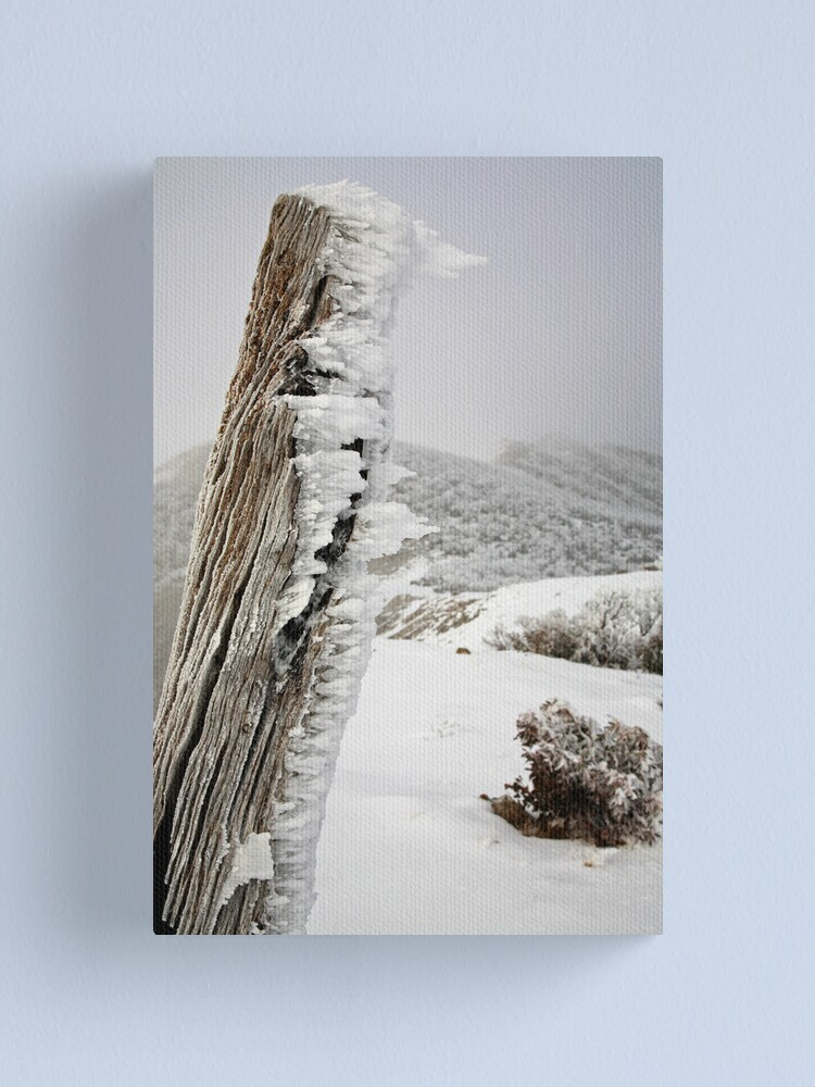 Alternate view of Winter on the Razorback, Mt Hotham, Australia Canvas Print