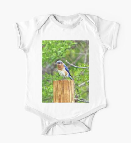Bluebird on a Fence Post Kids Clothes