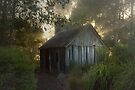 The slab hut . . . by Rosalie Dale