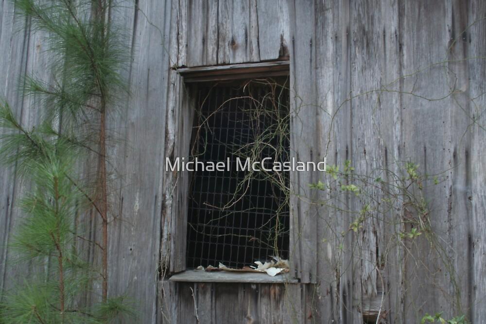 Mattress Spring Window by Michael McCasland