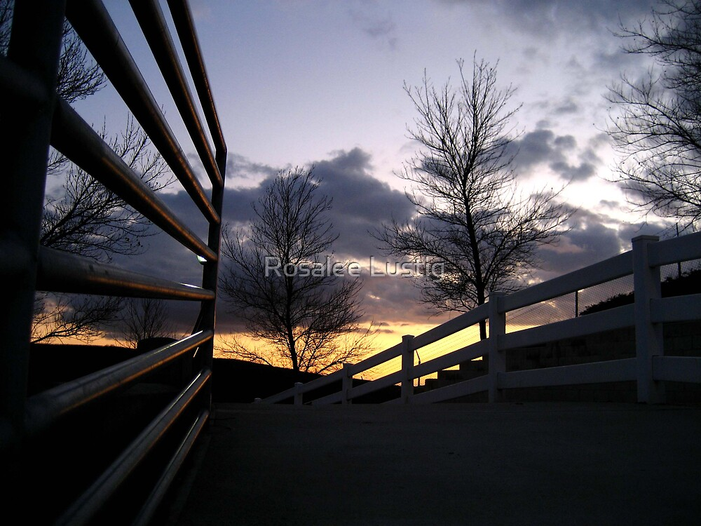 Follow a Sunset by Rosalee Lustig