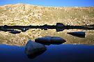 Early morning refections of Mt Kosciusko summit, Australia by Michael Boniwell