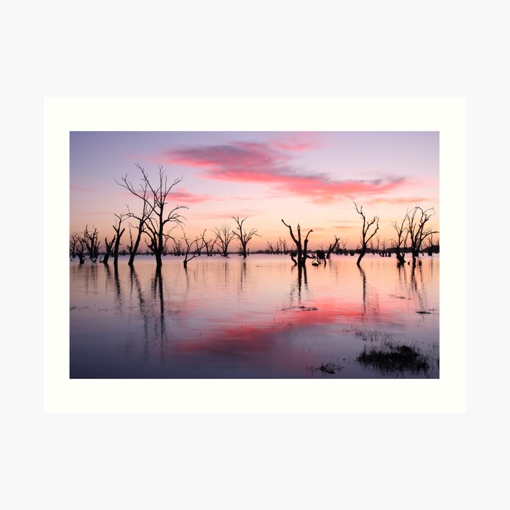 Lake Victoria Dawn, Australia Art Print