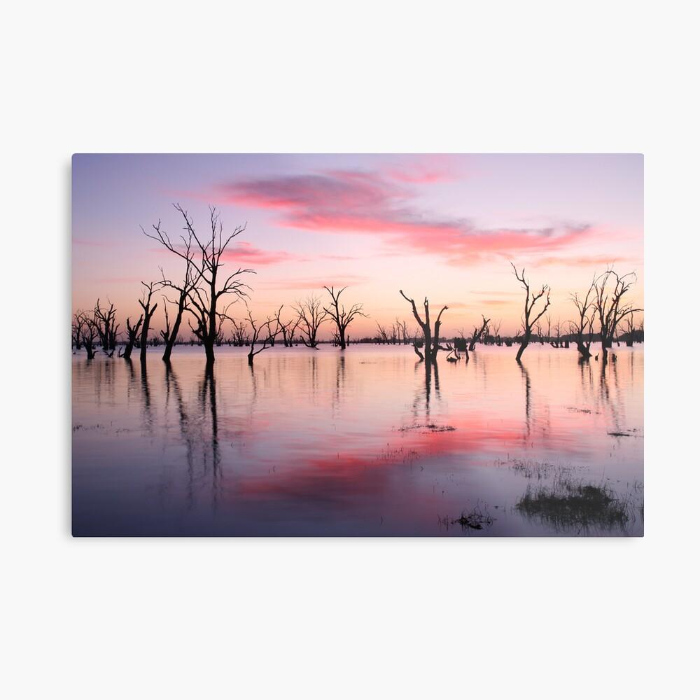 Lake Victoria Dawn, Australia Metal Print