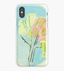 Alligator Gorge 1 iPhone Case/Skin