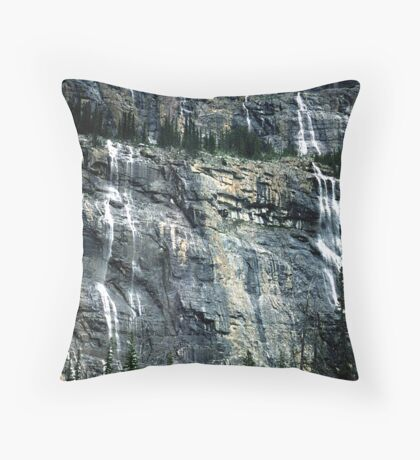 The Weeping Wall Throw Pillow