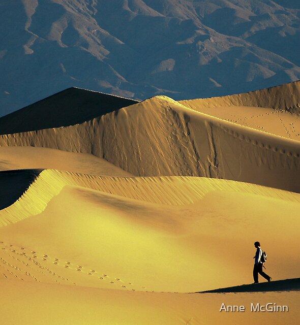 Dunes by Anne  McGinn