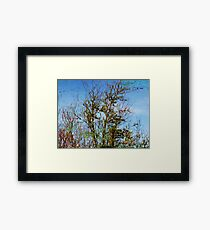 Water Color Painting in a Ditch  Framed Print