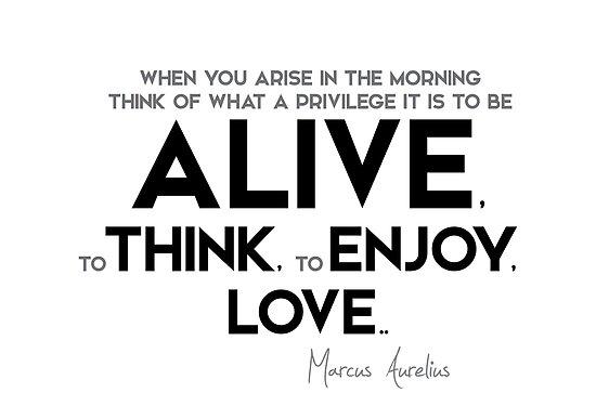 what a privilege it is to be alive - marcus aurelius by razvandrc