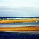 Sandbars  by cjcphotography