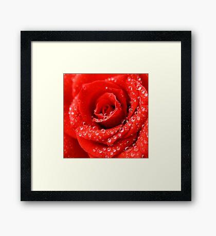 Red Pleasure Framed Print