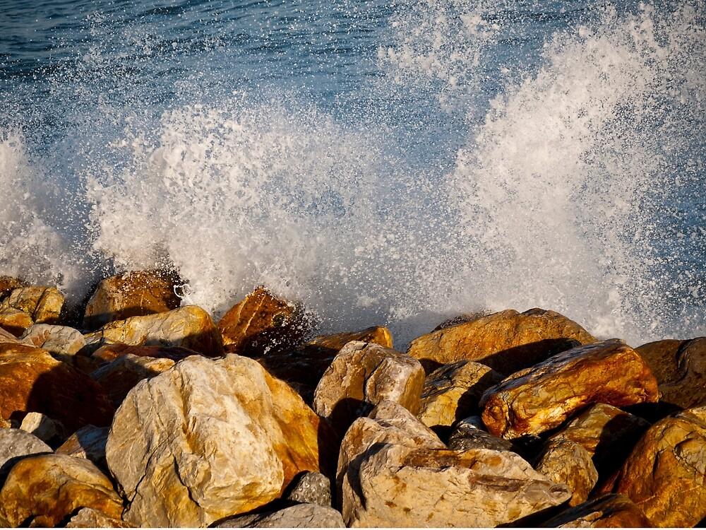 Wave Spray by Rae Tucker