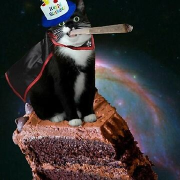 birthday hero kat by taco-elgato