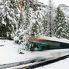 Yosemite Shuttle Bus in Winter of 2017 by Eric Kulikoff