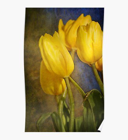 Katie's Tulips Poster