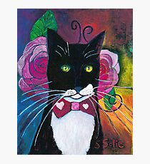 Tuxedo Cat and Pink Roses  Photographic Print