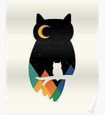 Eye On Owl Poster
