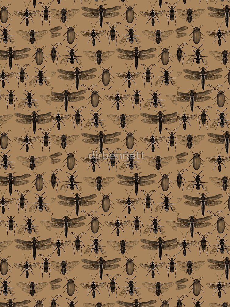 Entomology studies pattern by djrbennett