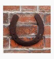 horse shoes  Photographic Print