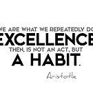 excellence is a habit (v2) - aristotle by razvandrc