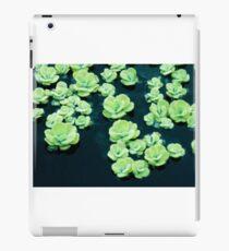 Botanisch iPad-Hülle & Skin