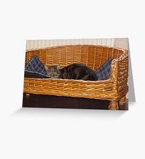 Cat in Dog Basket II Greeting Card