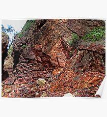 """RedRock Rocks"" Poster"
