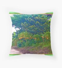 Back Road with Trumpet Flowers Throw Pillow
