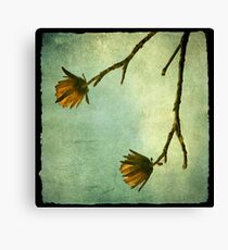 Tree Flowers Canvas Print