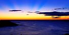 Coogee Bay, New South Wales. by Andy Newman