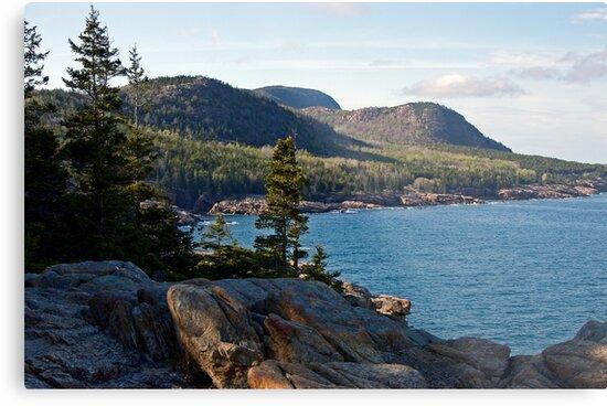 Cadillac Mountain - Acadia National Park by Stephen Beattie