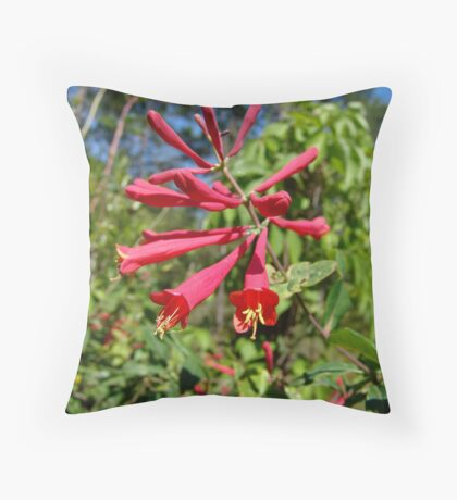 Trumpet Honeysuckle (Lonicera sempervirens) Throw Pillow