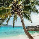 The dream beach by a-bandomir