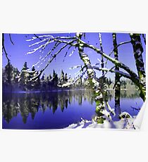 Painted Winter Reflections Poster