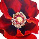 Big Red Poppy by marlene veronique holdsworth