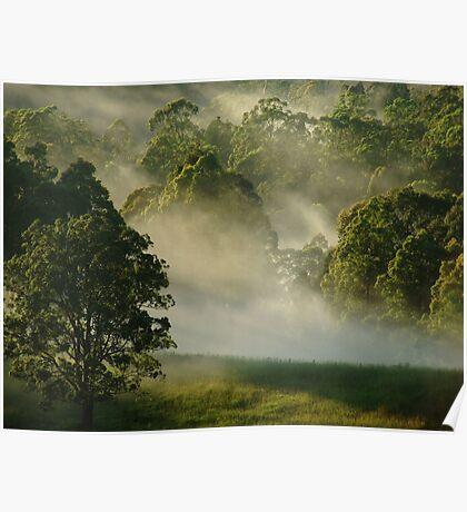 """Sunshine & Mist"" Poster"